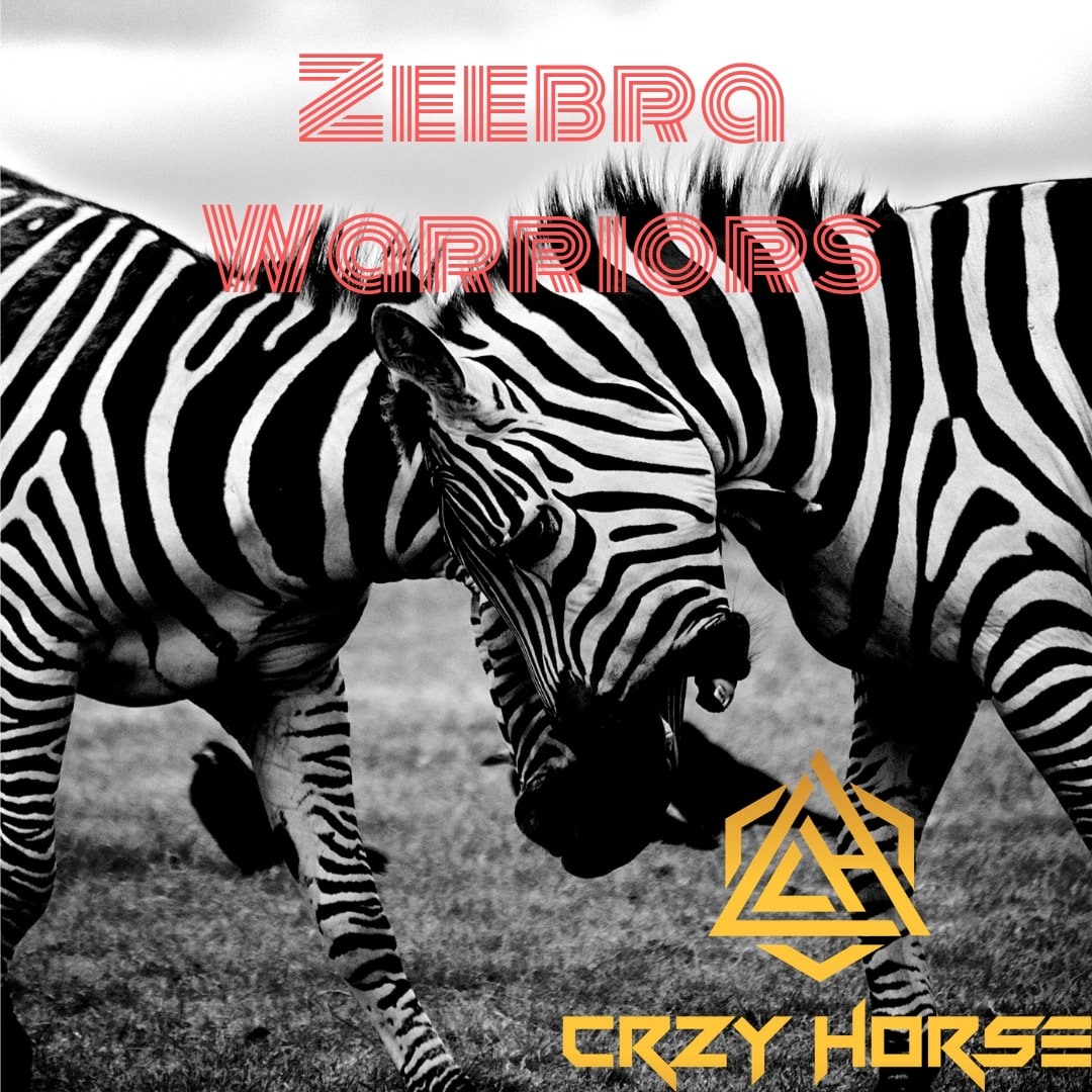 From the Nation of Australia – With a mesmerizing Arabesque lead the new drop from 'Crzy Horse' is 'Zeebra Warriors'