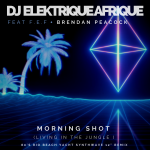 DJ Elektrique Afrique was inspired by a trip to the South African Wild Coast and the news analysis show and You Tube channel 'Morning Shot' with Roman Cabanac for his new single Morning Shot' Living in the Jungle